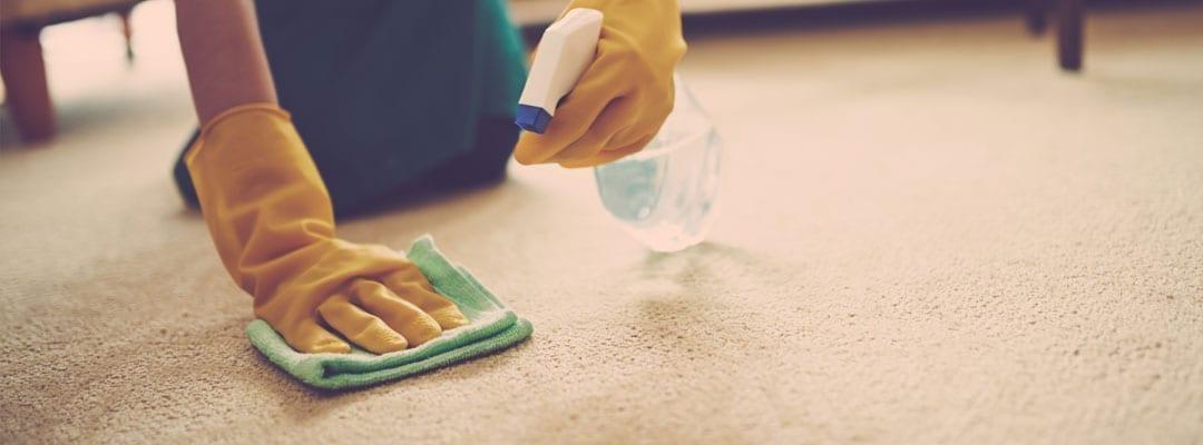 tip-pic-clean-carpet