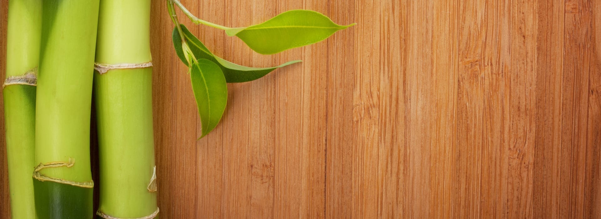 The Best Green Flooring Products for Your Family