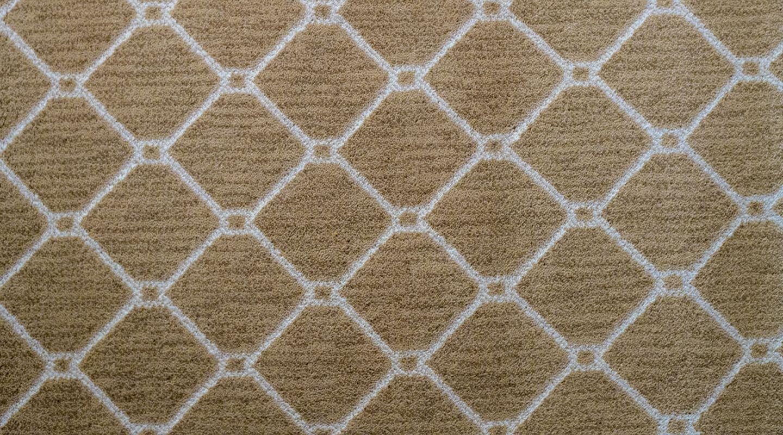 Seda wool area rug